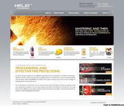 Affordable Professional Web Designing & Development Services