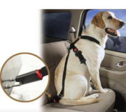 FREE Dog Seat Belt. This could save your dogs life!